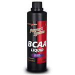 BCAA Power System