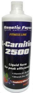 Купить GENETIC FORCE L-Carnitine 2500 500ml в Москве, цена на средство для здоровья GENETIC FORCE L-Carnitine 2500 500ml в интернет-магазине Iw-Shop