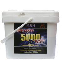 Купить MSN Iron Mass 5000 Watt 4500g в Москве, по доступной цене в интернет-магазине Iw-Shop