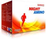 DYNAMIC DEVELOPMENT Night Amino 25amp